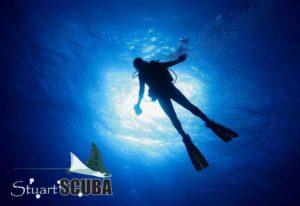 Stuart Scuba- World Class Diving