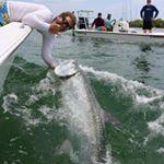Grey Ghost Fishing Charters