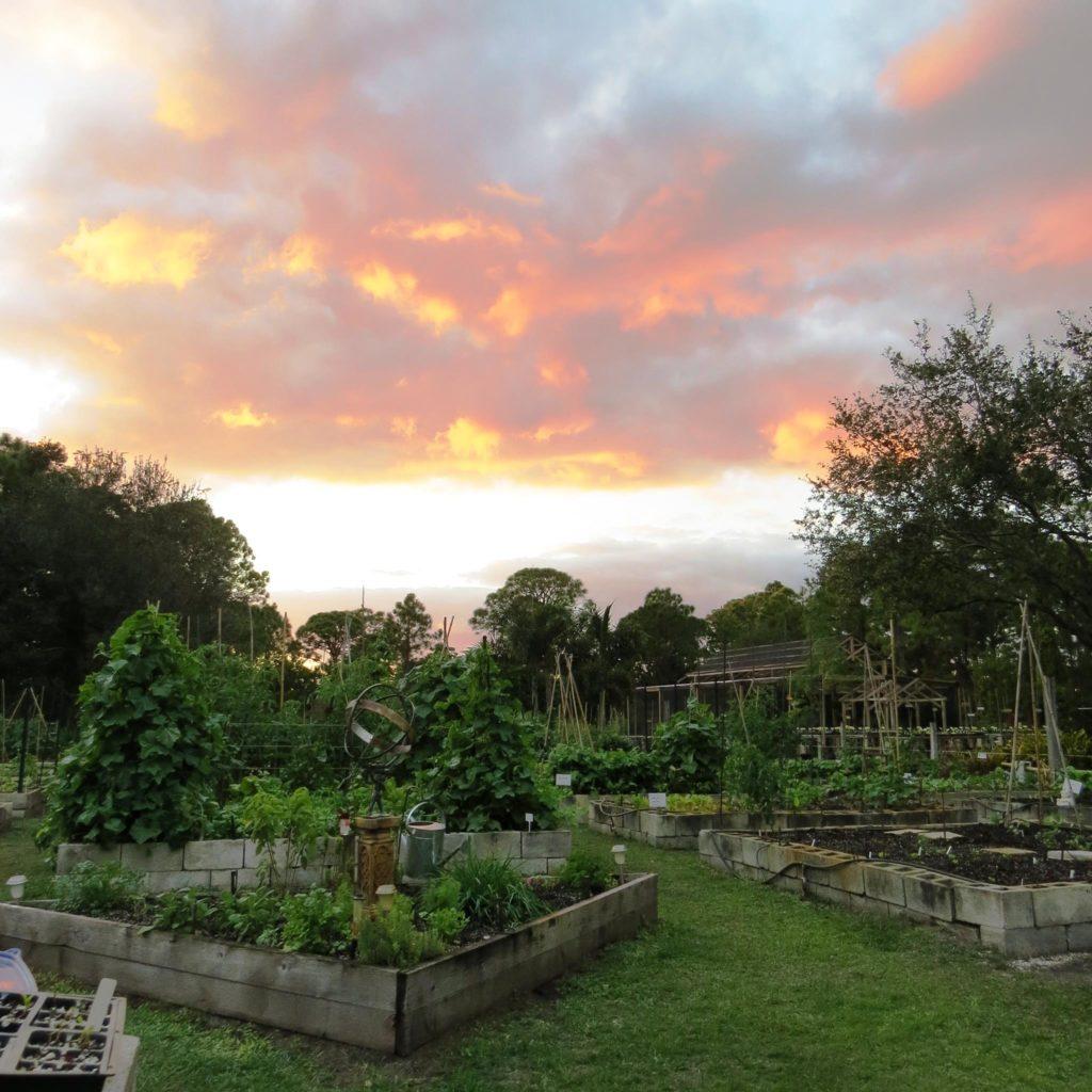Shadowood Farm Palm City FloridaShadowood Farm in Palm City